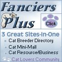 Advertise your cats here!